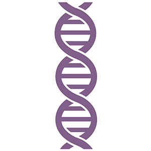 Diagnóstico Genético Preimplantacional (D.G.P.)